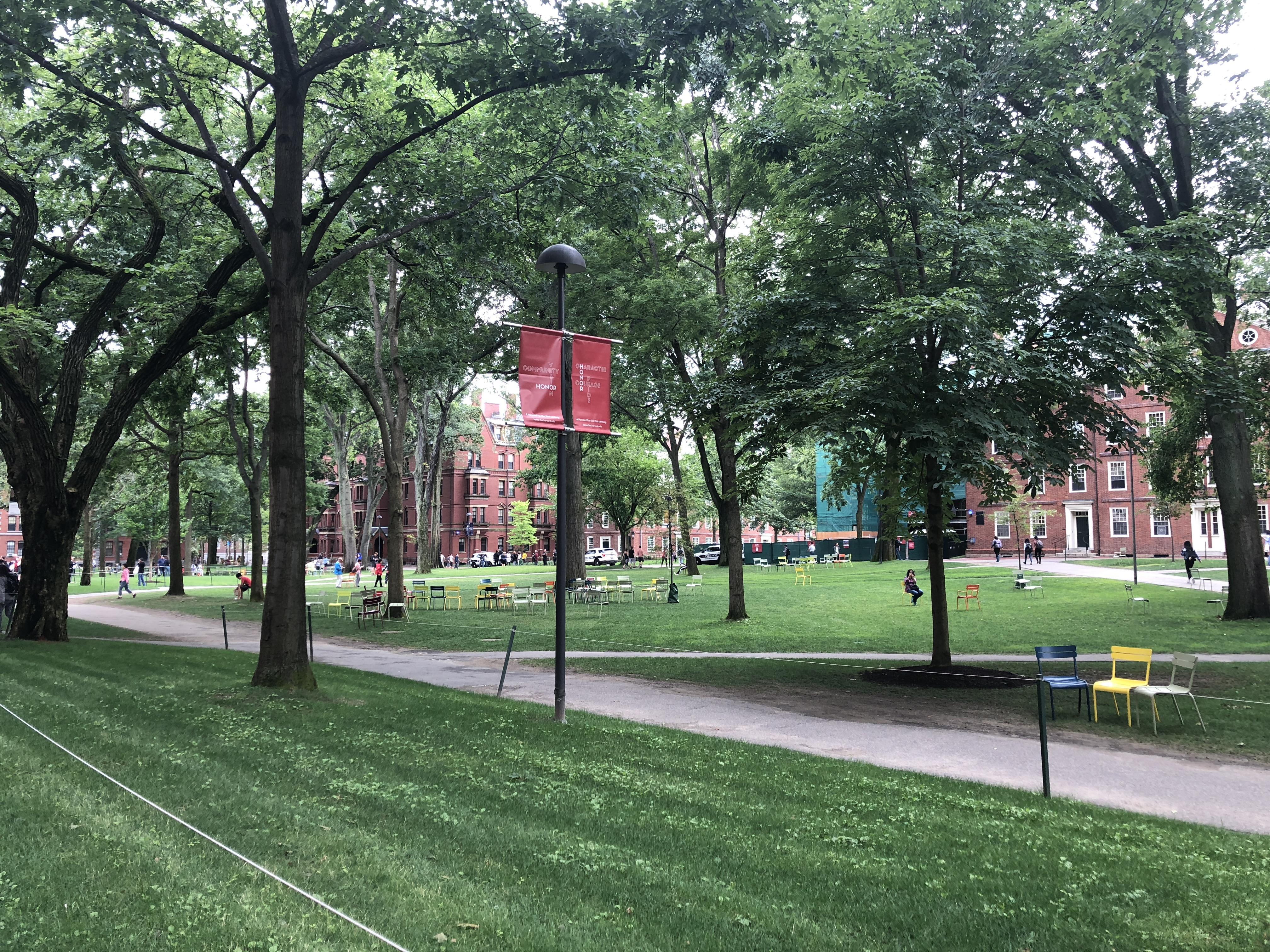 Link Academy meets Harvard!